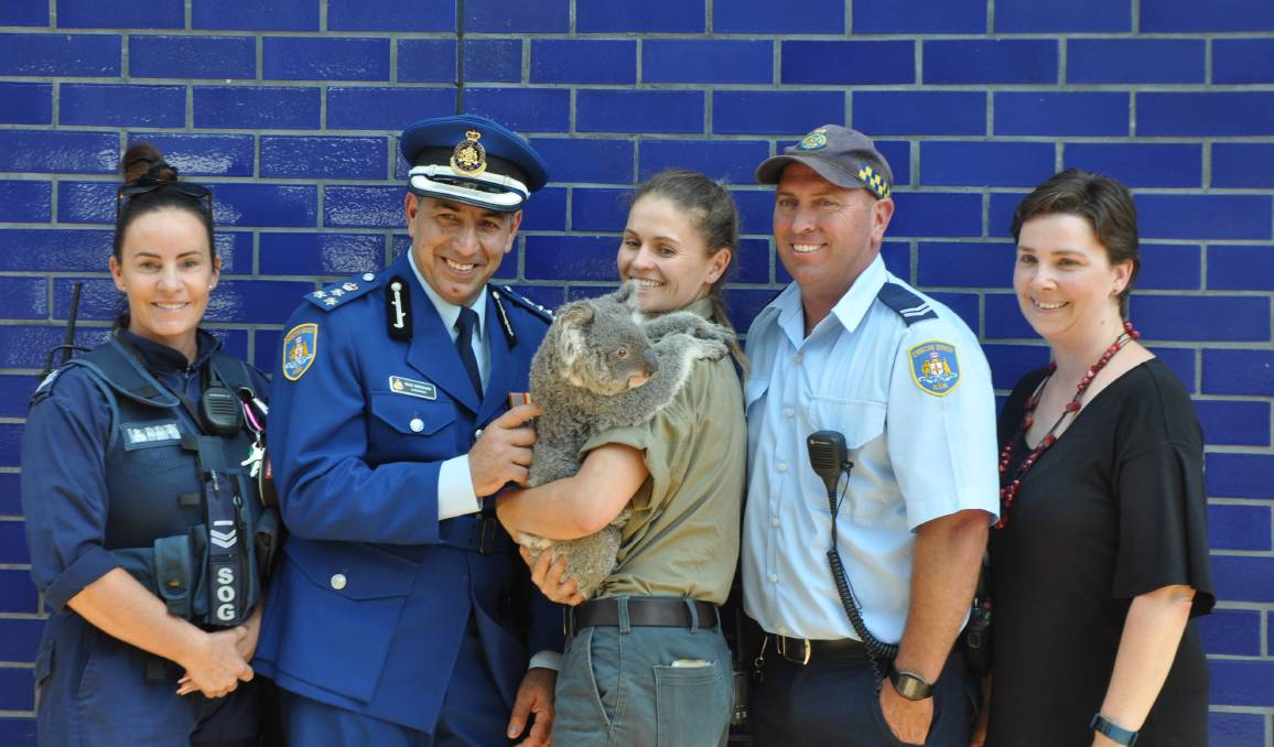 Peter the Koala was welcomed with open arms at the recent announcement of the project. Photo: Stephen Katte